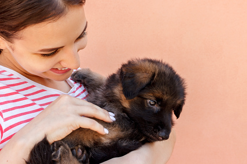1149249445 istock photo Young woman keeping black German shepherd puppy near her face 1028302332