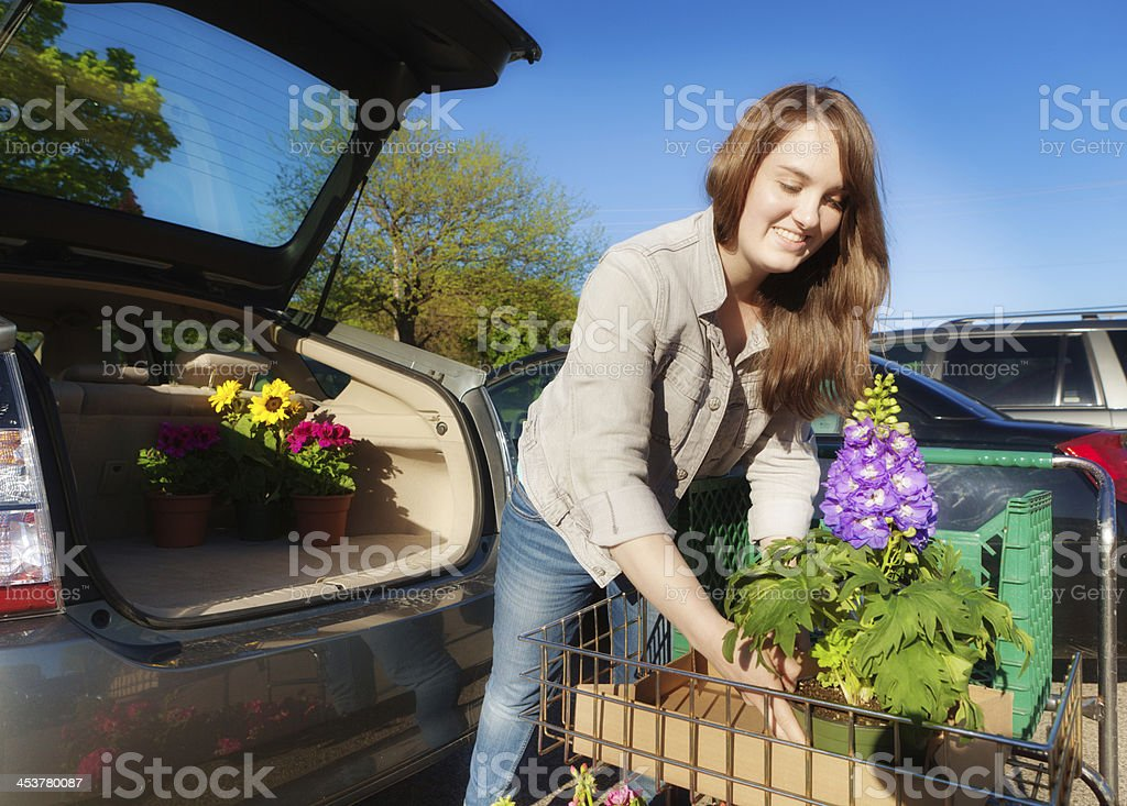 Young Woman Loading Garden Seedling Potted Plants into Hatchback Car stock photo