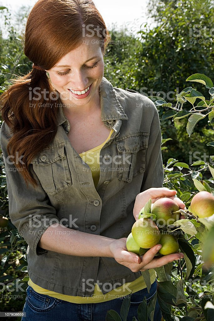 Young woman looking at apples in field royalty-free stock photo