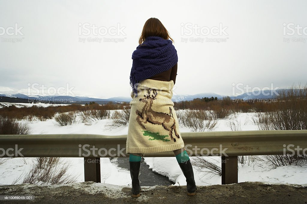 Young woman looking over snowy landscape royalty free stockfoto