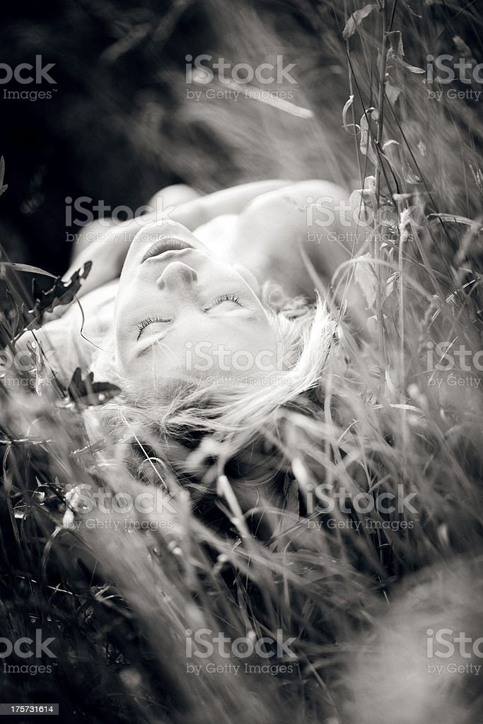 Young woman lying in the high grass royalty-free stock photo