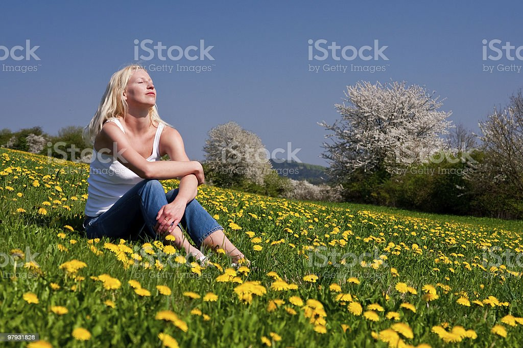 young woman lying on a meadow royalty-free stock photo