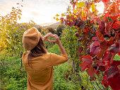 Woman loving the vineyard