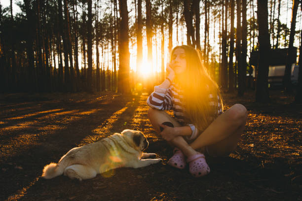 Young woman meets the bright sunset in the pine forest with her dog picture id1270266289?b=1&k=6&m=1270266289&s=612x612&w=0&h=1saplqutgrjmxdnkvpmewcqagnpoa1u1rt1lv0wzkp4=