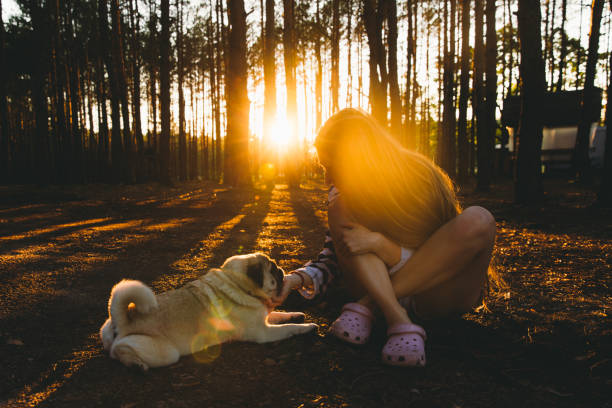 Young woman meets the bright sunset in the pine forest with her dog picture id1270266292?b=1&k=6&m=1270266292&s=612x612&w=0&h= w9lf0ttpxeqsioqwb ldflzvtgtdbct3r3fbt2urta=