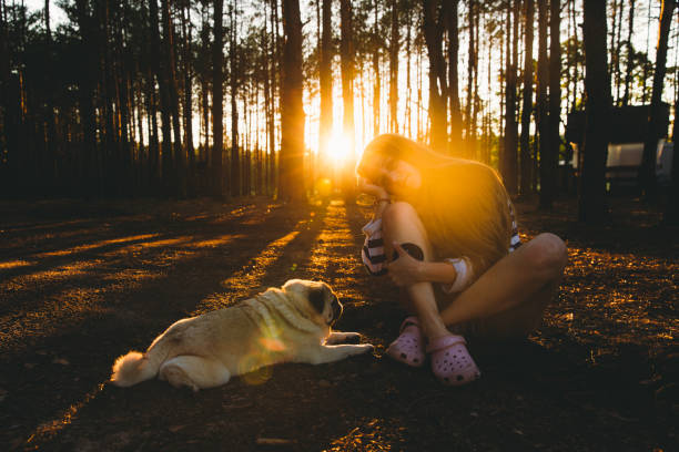 Young woman meets the bright sunset in the pine forest with her dog picture id1270266507?b=1&k=6&m=1270266507&s=612x612&w=0&h=dbtc6eminxwco8m0yrpo05v3fkzkblruucam6miybyo=