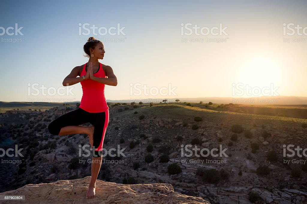 Young Woman Of Ethnic Descent Performing Yoga Outdoors stock photo