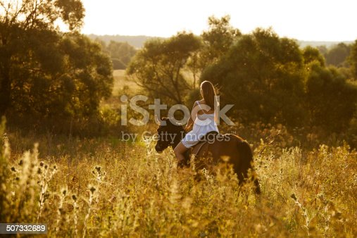 1128475475 istock photo Young woman on a brown horse 507332689