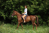 istock Young woman on a horse ride in forest 816194368