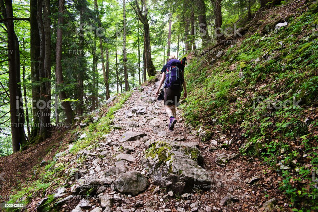 Young woman on a mountain trail in bavarian alps stock photo