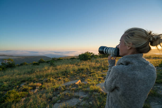 Young woman on safari photographing landscape stock photo