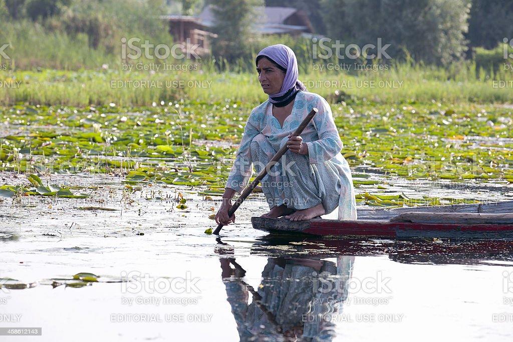 Young Woman on Shikara Boat Lake Dal Srinagar stock photo