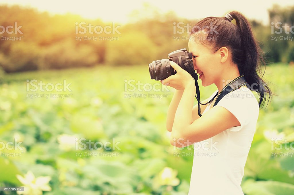 young woman photographer taking photo of blooming lotus at park stock photo
