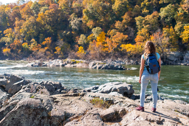 Young woman photographer with backpack and camera looking at view of Potomac river in Great Falls with autumn colorful foliage in Maryland stock photo