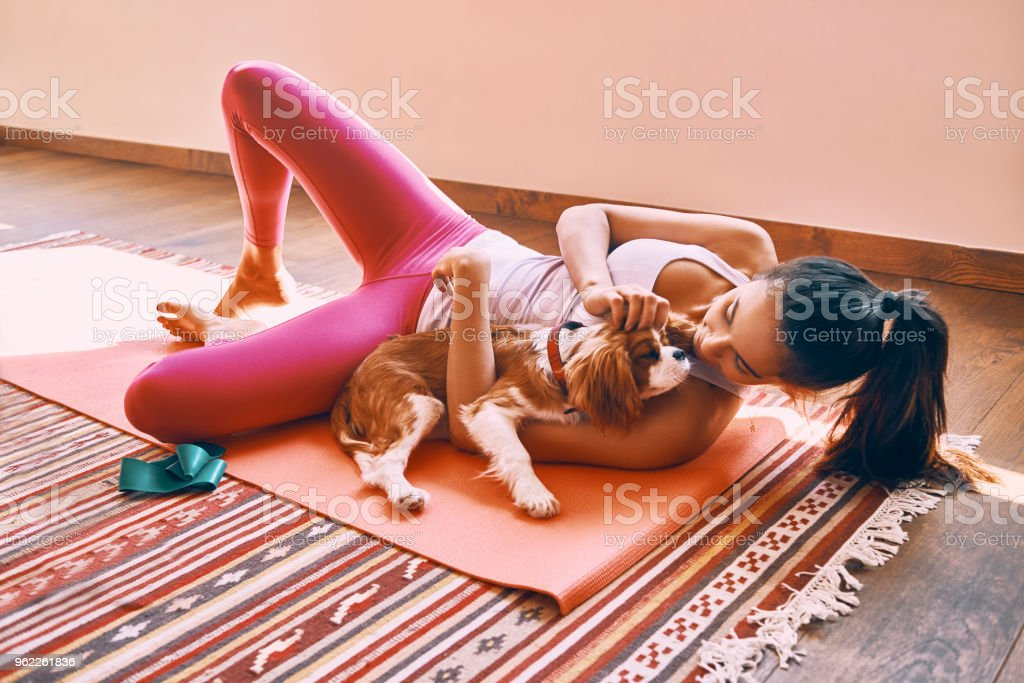 young woman playing around with her little dog after finished workout at home stock photo