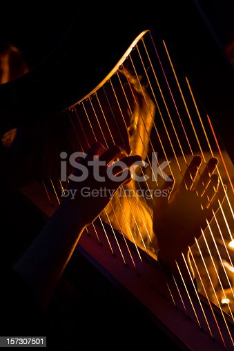 Young woman playing the harp near the fire at night