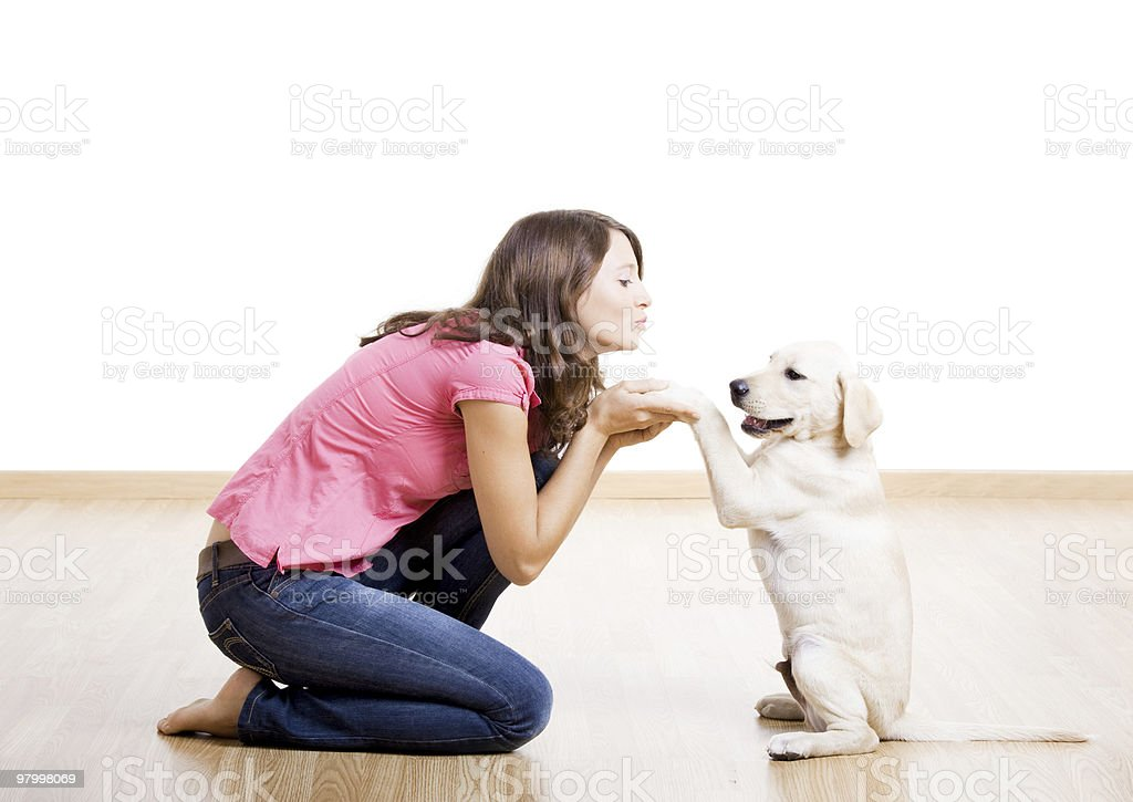 A young woman playing with a white Labrador dog royalty free stockfoto