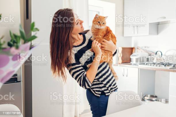 Young woman playing with cat in kitchen at home girl holding and picture id1133779193?b=1&k=6&m=1133779193&s=612x612&h=pius hkmwhf0gjwsu3xnqztholwa3jv2b3wbxzgm6eo=