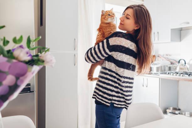 ung kvinna leker med katten i köket hemma. flickan håller och att höja röd katt - katt inomhus bildbanksfoton och bilder