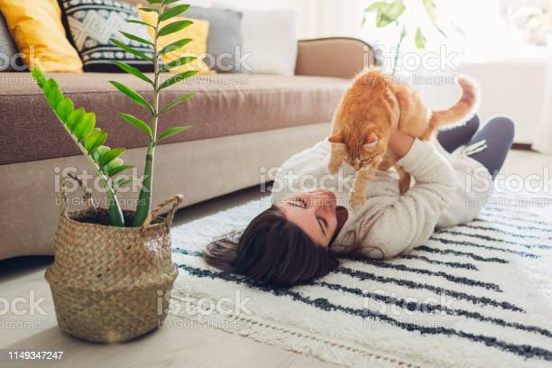 Young woman playing with cat on carpet at home master lying on floor picture id1149347247?b=1&k=6&m=1149347247&s=612x612&h=jzwslbq8gqyxxhslidkrtdhcuyu2ofbn5ejxdxltm58=
