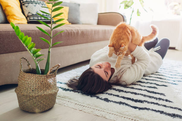 Young woman playing with cat on carpet at home master lying on floor picture id1149347247?b=1&k=6&m=1149347247&s=612x612&w=0&h=eulnroagsf1cdwf4ci1u9gx8gf5irzddlkmpkekpty4=