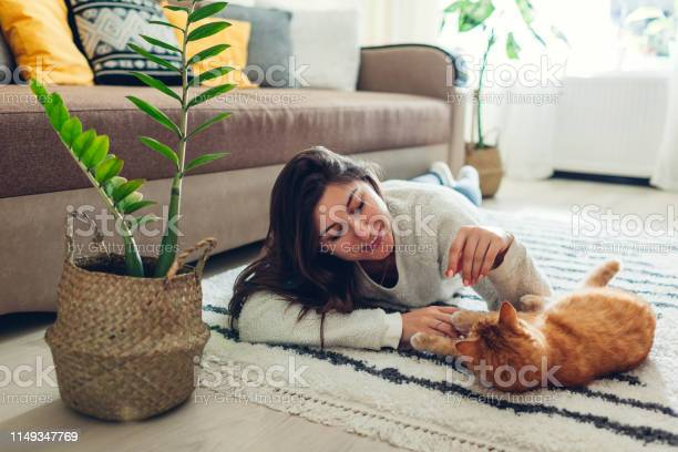 Young woman playing with cat on carpet at home master lying on floor picture id1149347769?b=1&k=6&m=1149347769&s=612x612&h=pcjbr8e8nktxzeyilwqv04kjy7kvxnumyizdo2lw5mm=