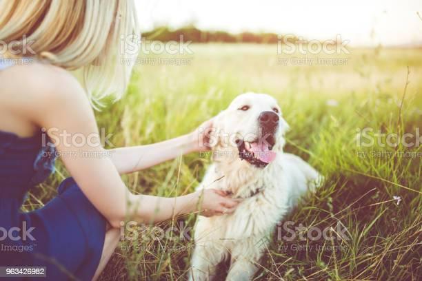 Young woman playing with her dog outdoor picture id963426982?b=1&k=6&m=963426982&s=612x612&h= w6uznapcx 0e3 v szvjtzsvfwradfiya9e3km3uu4=