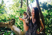 Young woman playing with macaque monkeys near the famous Monkey Forest in Ubud, a small town in Bali, Indonesia. It's a popular natural habitat or a sanctuary with many Hindu temples as well.