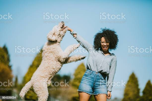 Young woman plays outside with pet poodle dog picture id954339034?b=1&k=6&m=954339034&s=612x612&h=5mulcz3dd65weylxs6wb3mglnl1q5wozgrvbrvl3ikq=