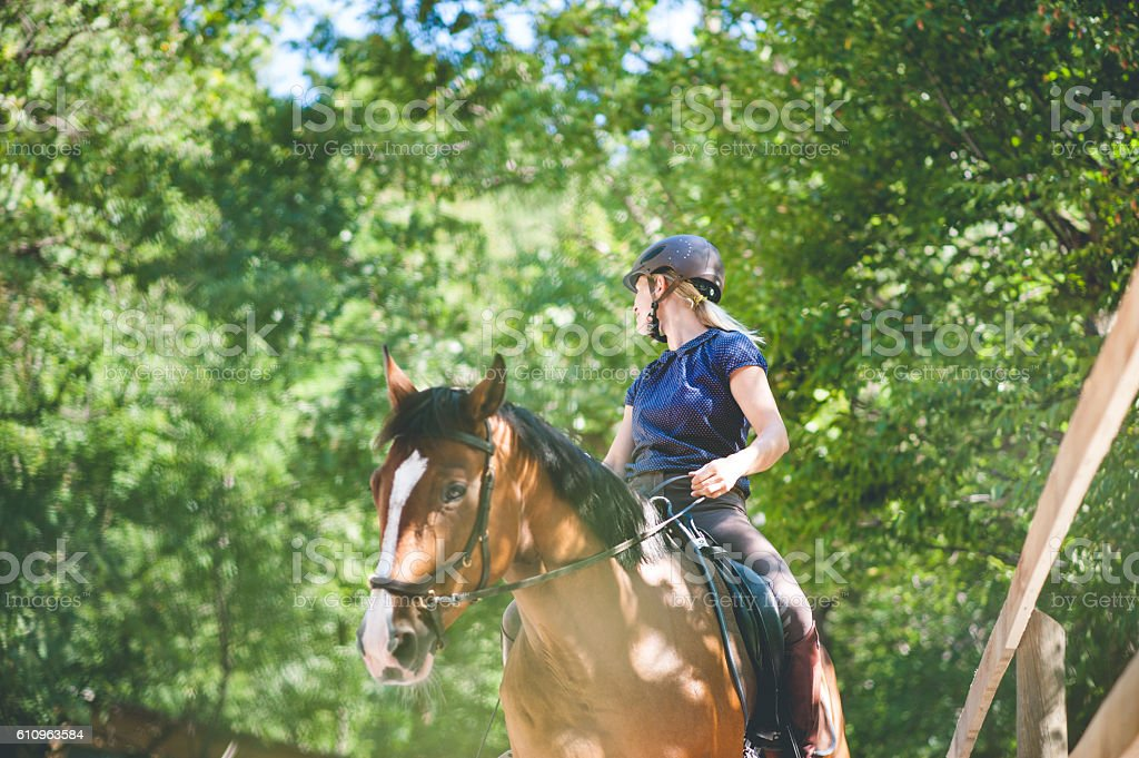 Young Woman Portrait With her Horse stock photo