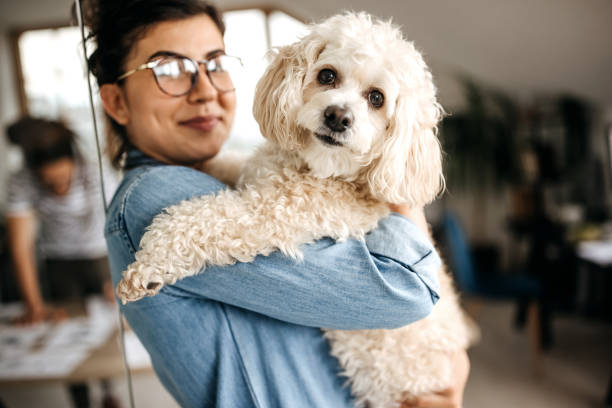 Young woman posing with a dog in her arms stock photo