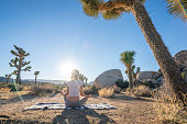 Young woman practicing yoga pose in nature near Joshua trees in the Californian desert; girl in the USA enjoying nature and relaxation exercises