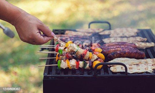 696841580 istock photo Young woman preparing barbecue in the backyard 1249868062