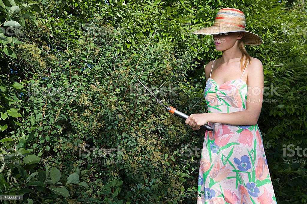 A young woman pruning a bush 免版稅 stock photo