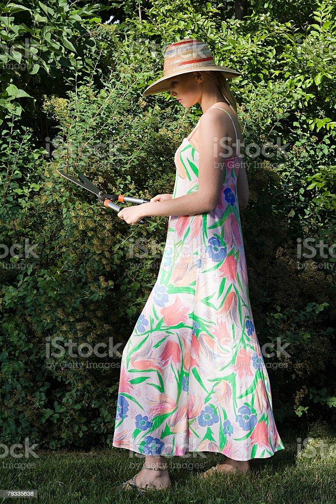 Eine junge Frau Stutzen einen Strauch Lizenzfreies stock-foto