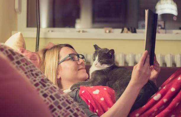 junge frau, die ein buch mit ihrer katze in der nacht - humor bücher stock-fotos und bilder
