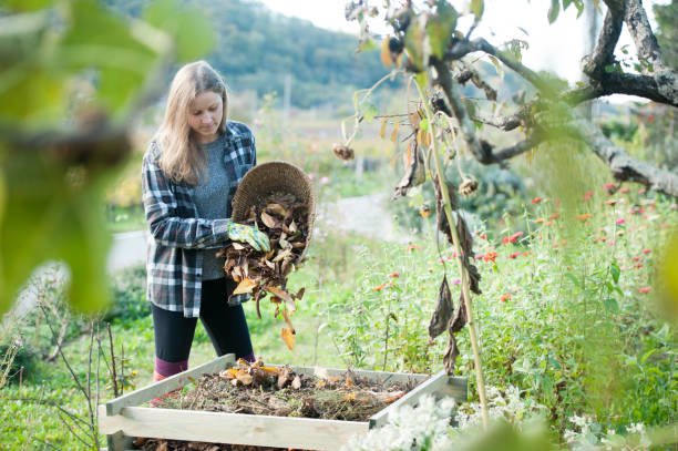 Young Woman Recycling Dried Leaves in the Composter, Slovenia, Europe stock photo