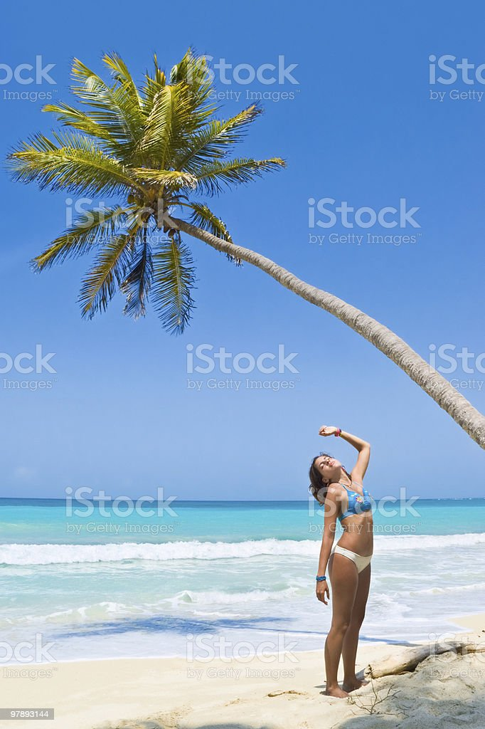 Young woman relaxing beside a coconut tree royalty-free stock photo