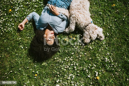 istock A Young Woman Rests in the Grass With Pet Poodle Dog 954338790