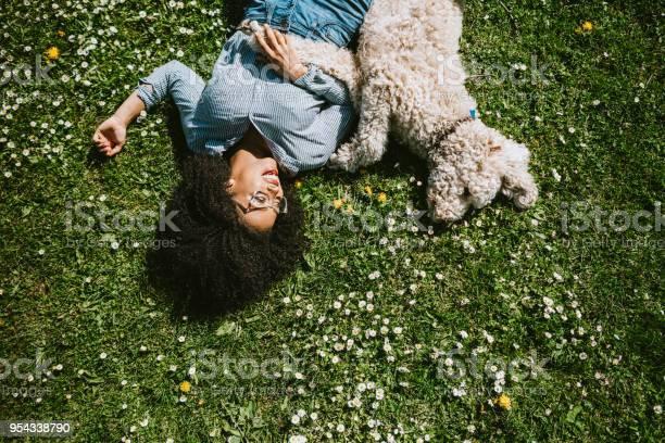 Young woman rests in the grass with pet poodle dog picture id954338790?b=1&k=6&m=954338790&s=612x612&h=zyxwvkny3ssjba98rznydxrvdwrrgzyym7dpv5vkwtc=