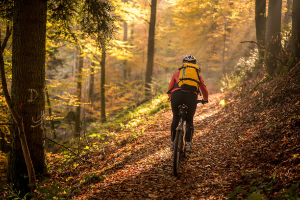 Young woman rides bike through forest at sunrise stock photo