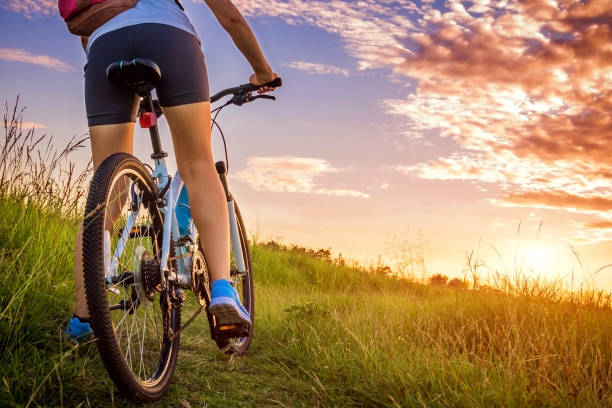 Young woman riding a bicycle on the field Young woman riding a bicycle on the field at sunset female biker resting stock pictures, royalty-free photos & images