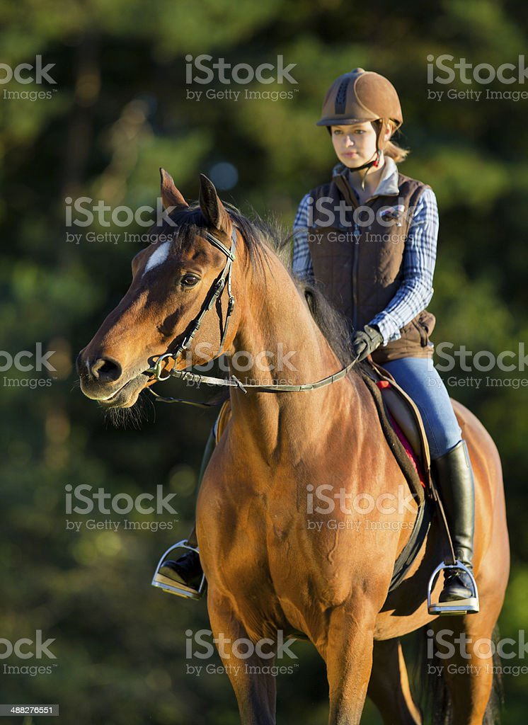 Young woman riding a horse, horse riding back. stock photo