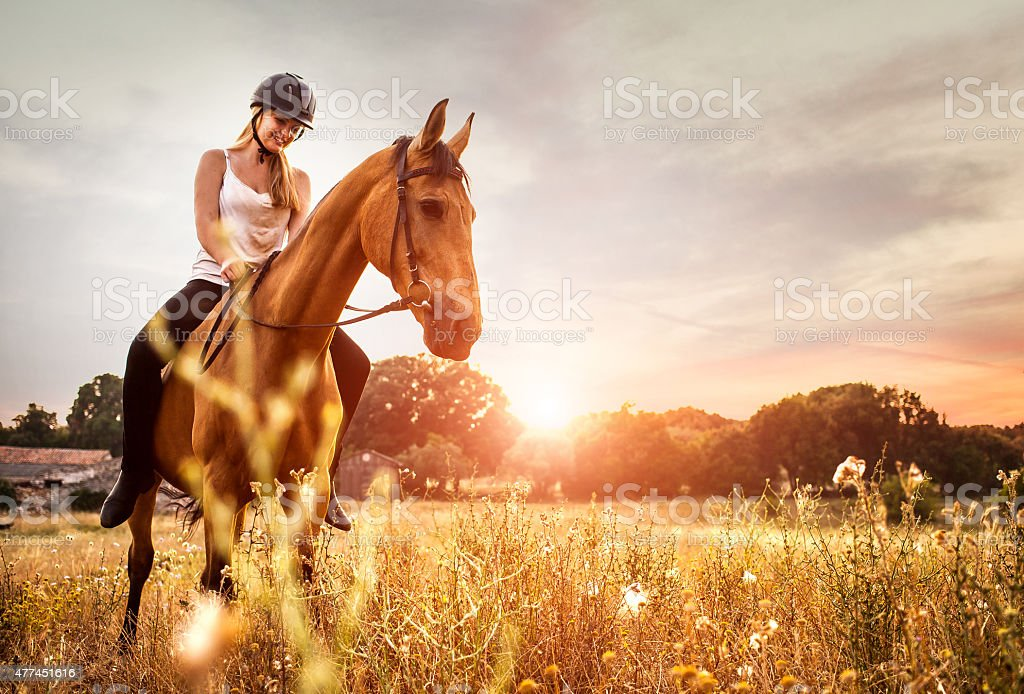 Young woman riding a horse in nature stock photo