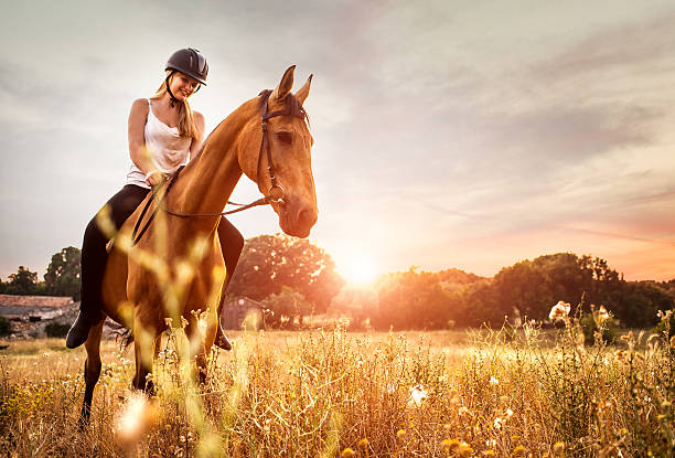 若い女性の自然の馬の乗馬 - 乗馬 ストックフォトと画像