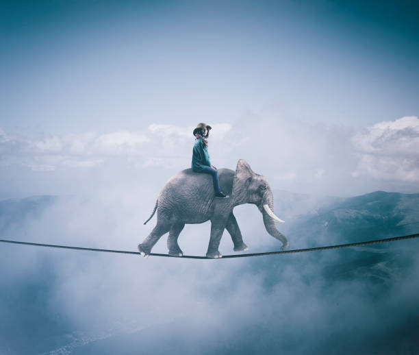 young woman riding an elephant on a rope at high altitude, above clouds and mountains. - dreamlike stock pictures, royalty-free photos & images