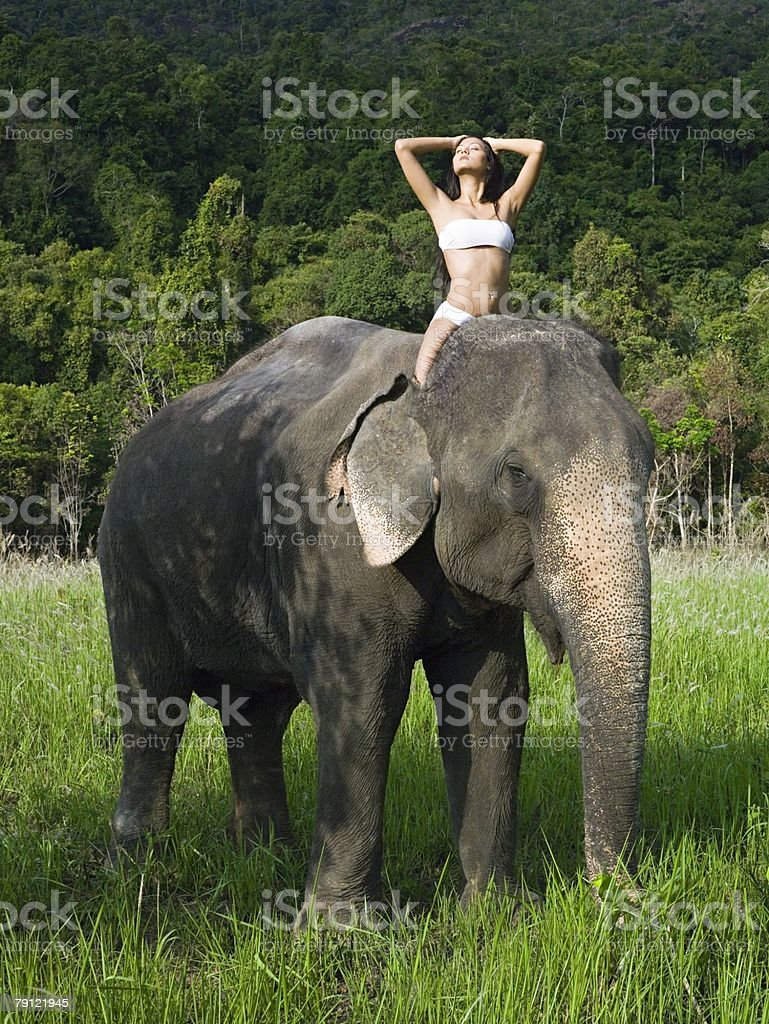 Young woman riding an elephant royalty-free 스톡 사진