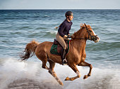 Portrait of a young woman who is riding her tan coloured Arabian horse along the waters edge at the beach at Klintholm Havn Photographed the island of Møn in Denmark. Colour, horizontal with some copy space.