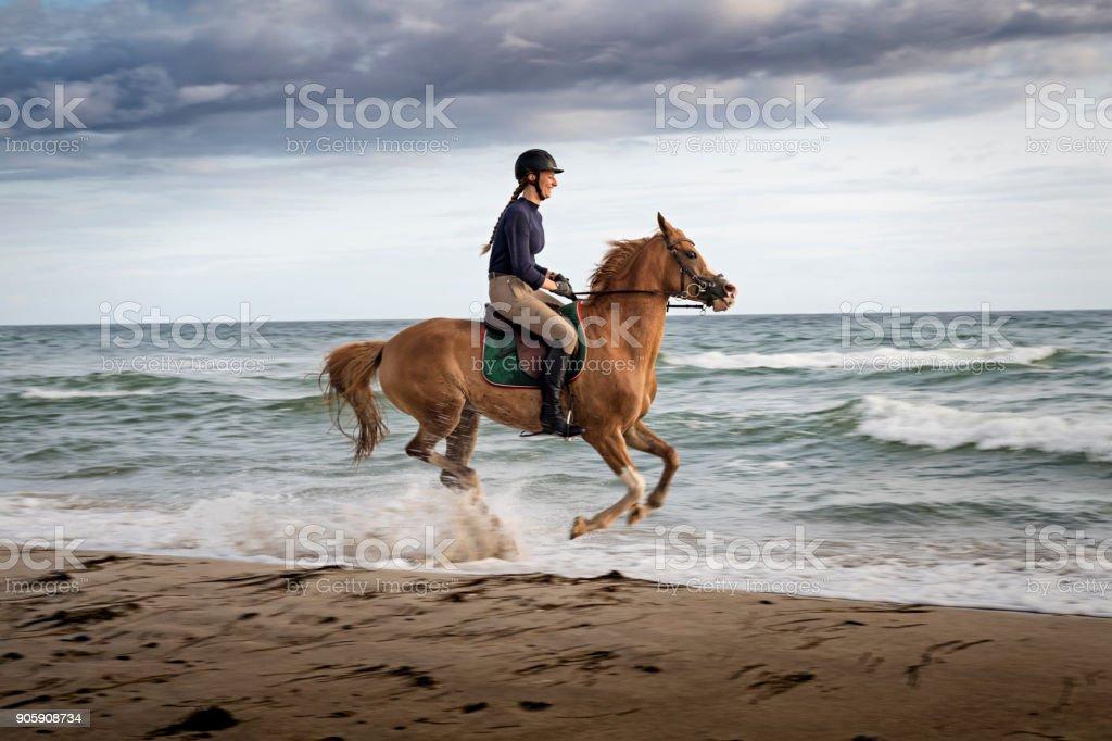 Young Woman Riding Her Arabian Horse Along The Beach. stock photo