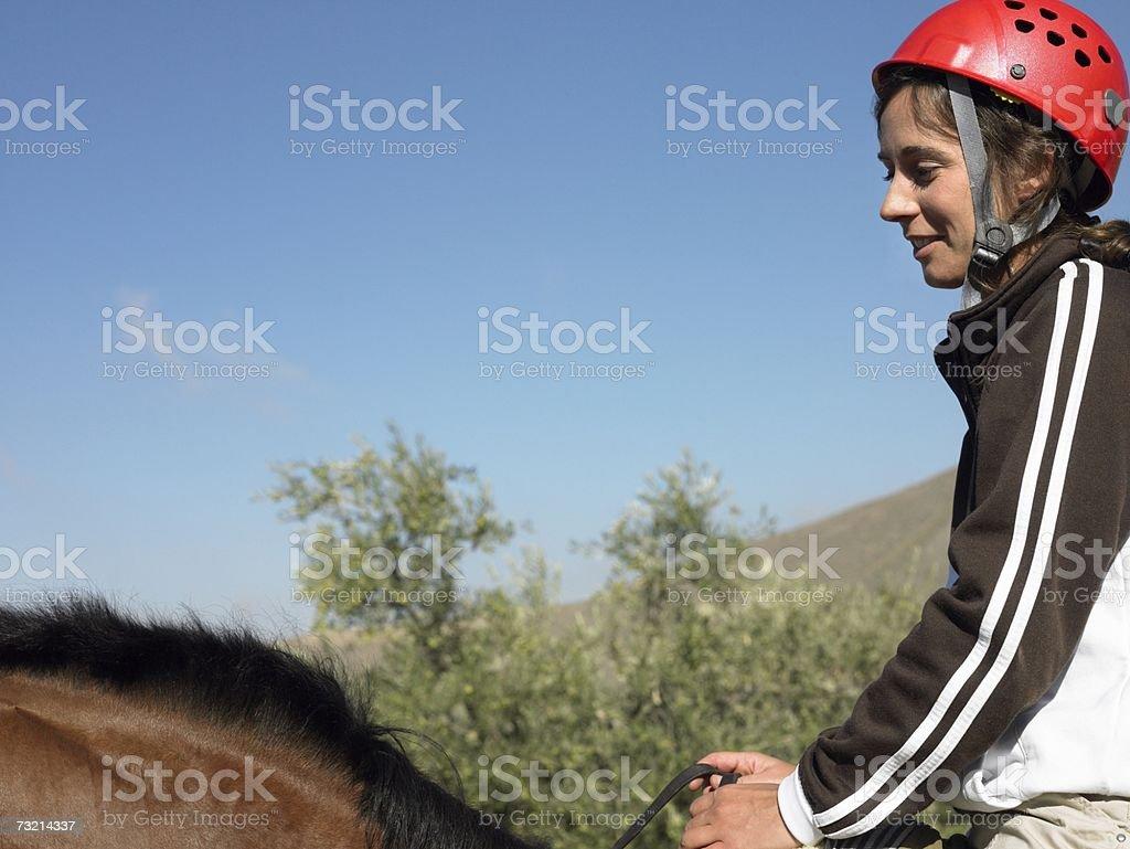 Jovem Cavalo de Equitação foto de stock royalty-free